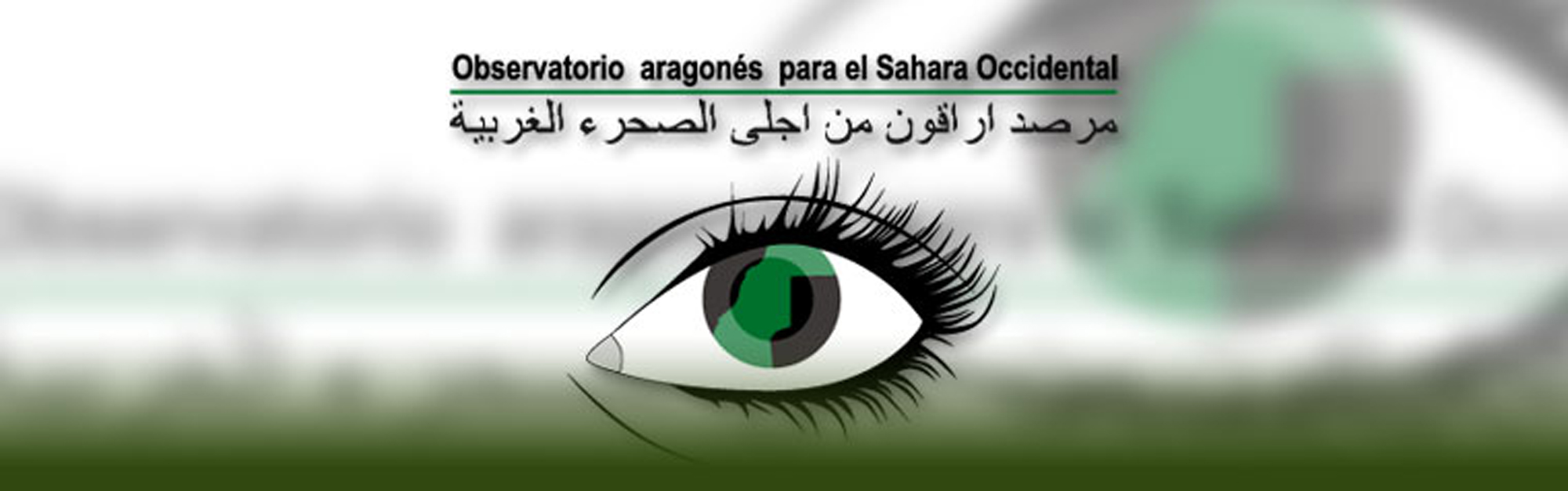 Observatorio Aragones para el Sahara Occidental